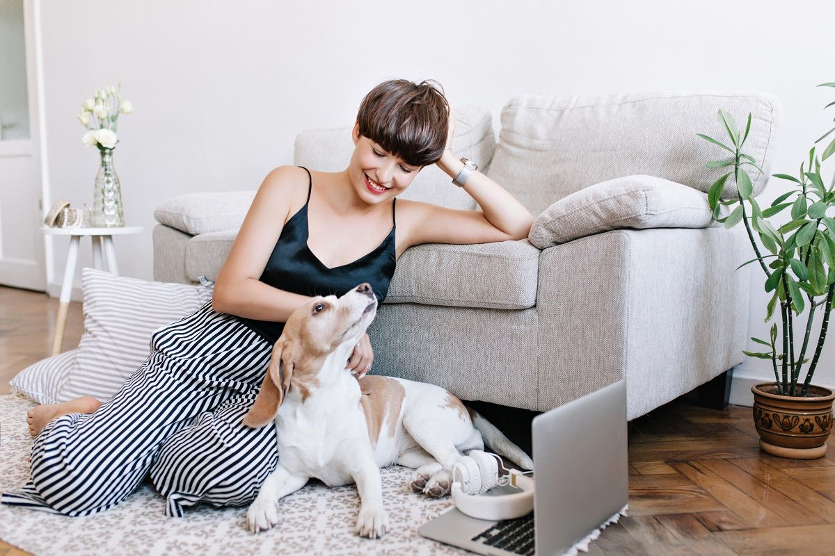 Seven Tips to Successfully Owning a Dog in an Apartment